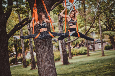 Two attractive graceful girls are doing stretchening exercises on the slings in the summer park.
