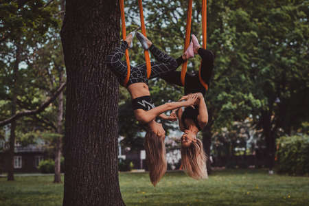 Two happy smiling girls are doing exercises upside down on the slings in the summer park.