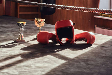 There are prizes on sunny boxing ring - cups, and also equipment like red gloves and helmet. Foto de archivo - 131286012