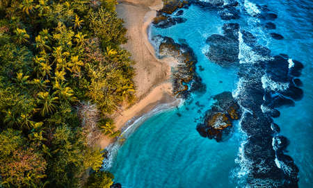 Aerial drone photo of a blue tropical lagoon surrounded by white sand of an exotic beach and palm trees.