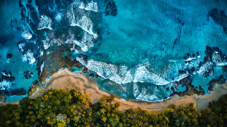 Aerial drone photo of a blue tropical lagoon surrounded by white sand of an exotic beach and palm trees. View from the top