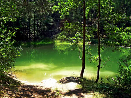 Beautiful calm hidden forest lake