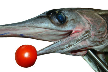 Detail of fresh swordfish head with tomato isolated photo