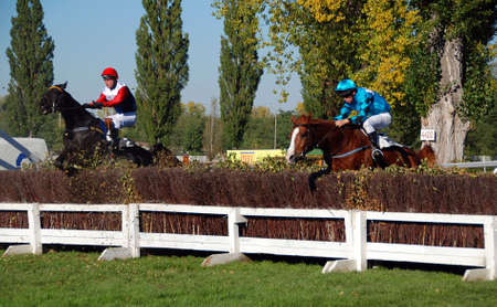 Horses are jumping over hurdle during the race Velka Pardubicka 2007 Stock Photo - 2323700