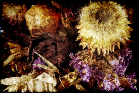 mapped: Various dried flowers in grunge style with many textures mapped