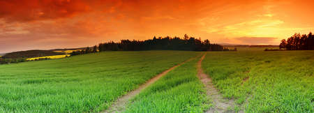 pano: Beautiful landscape panorama with green field and setting sun Stock Photo