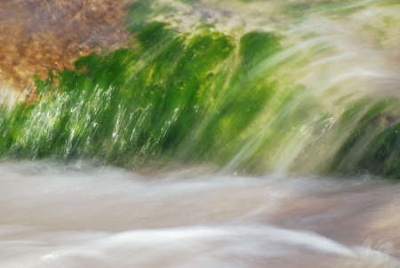 Abstract background of a granite boulder in the sea covered by seaweed is hit by a wave photo