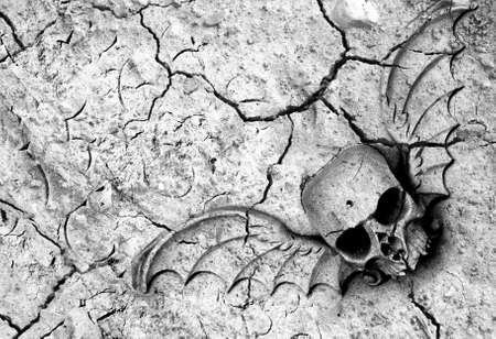 Drought means death in many parts of the world. Winged skull and cracked ground in black and white Stock Photo