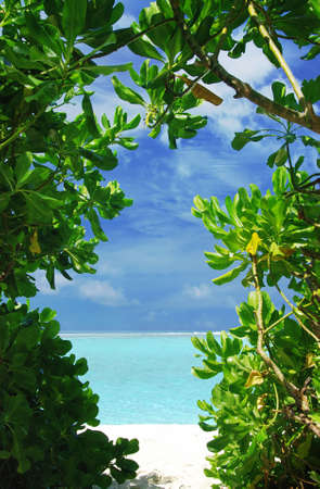 Window of tropical trees branches is showing beautiful white beach and turquoise see photo