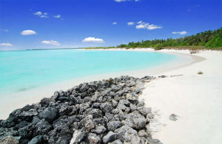 Beautiful Maldivian beach with a blue see, palm groove and stones in the front photo
