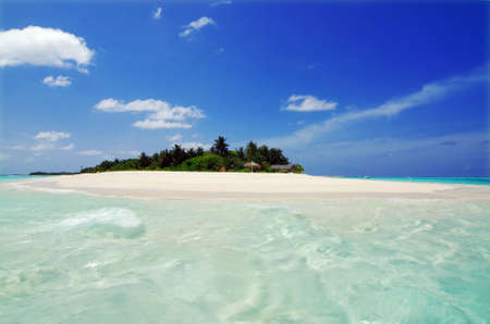 atoll: Beautiful Maldivian atoll with white beach seen from the sea