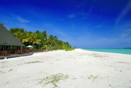 Holiday island in the Maldives with beautiful white beach and palms Stock Photo - 5579153