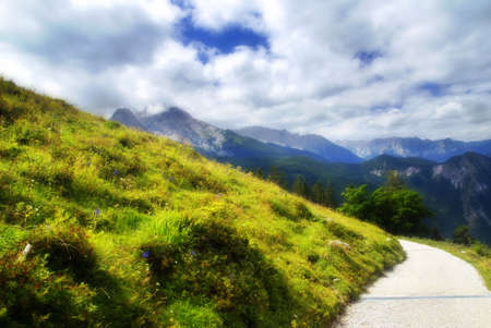 Beautiful alpine meadow with a road. the photo has a soft and dreamy look photo