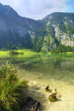 Beautiful Alpine lake with mountains in the back and ducks in front photo