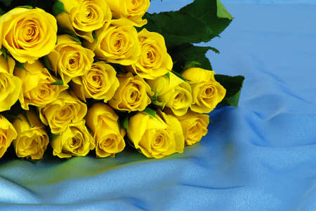 Beautiful yellow roses are laying on blue satin photo