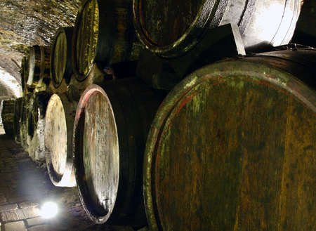 Old wine cellar with barrels and path Stock Photo - 6067600