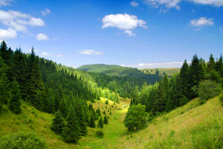 mountains: Tatras Mountains covered by green pine forests, Slovakia