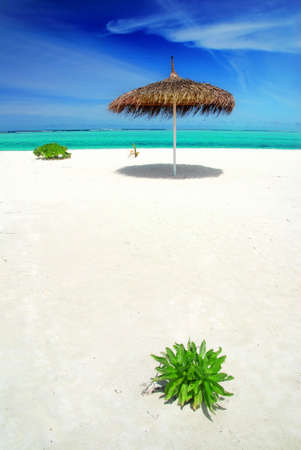 Beautiful white Maldivian beach with lonely parasol and turquoise sea photo