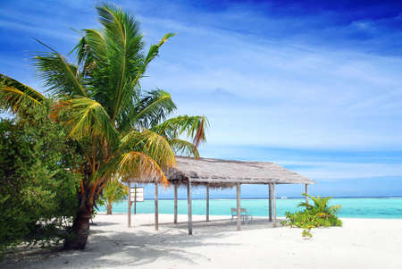 shack: Beautiful tropical beach with turquoise sea, white sand, palm and shack