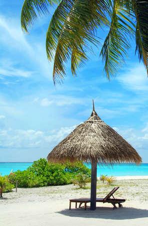 Beautiful white Maldivian beach with palm, parasol and turquoise sea