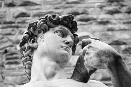 michelangelo: Head of a famous statue by Michelangelo - David from Florence