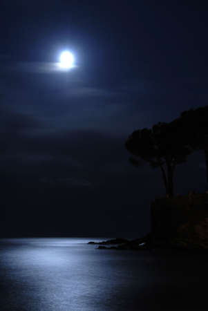 silent night: Moon is shining over the calm sea