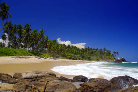 Beautiful tropical breach in the Seychelles with coconut palms and boulders  in the front photo