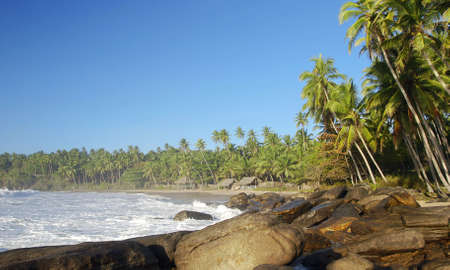 tangalla: Beautiful tropical beach with boulders and palms lit by a morning sun. Tangalla, Sri Lanka