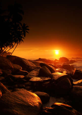 red sunset: Beautiful colorful sunset over sea and boulders seen under the palms on Sri Lanka