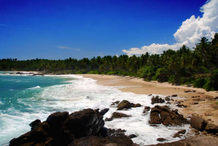 Tropical paradise on Sri Lanka with palms hanging over the white and red beach, turquoise sea and boulders in the front photo