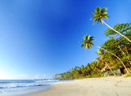 Tropical paradise in Sri Lanka, Tangalle with palms hanging over the beach, old wooden hut and turquoise sea photo