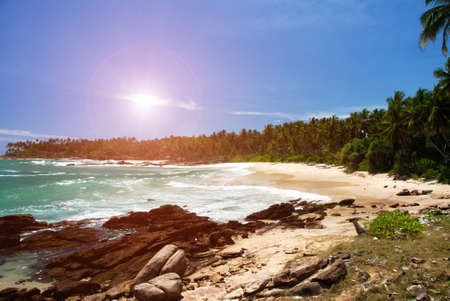 unspoilt: Tropical paradise on Sri Lanka with palms hanging over the white and red beach, turquoise sea and boulders in the front