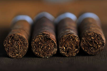 tobacco leaf: Detailed photo of a cigar front. Very shallow DOF Stock Photo