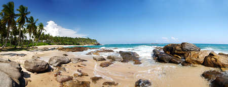 Wide panoramic photo of a tropical paradise on Sri Lanka with palms hanging over the beach and turquoise sea. photo
