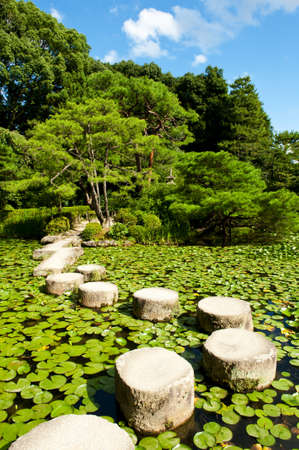 Zen stone path in a Japanese Garden near Heian Shrine.Stones are surrounded by lotus leaves photo