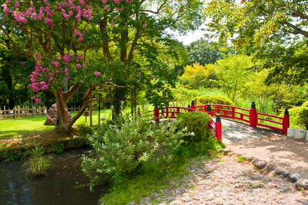 Beautiful Japanese garden with a lake and a red bridge in the front