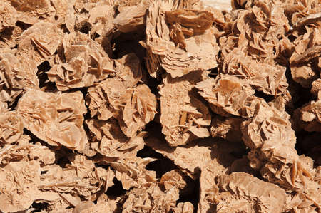 desierto del sahara: Montón de rosas Deser, cristales hechos de la arena del Sahara y la sal