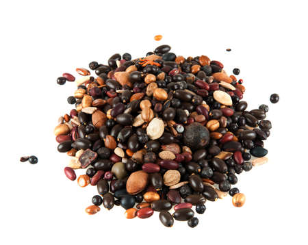 seed beads: Pile of various dry nuts and seeds