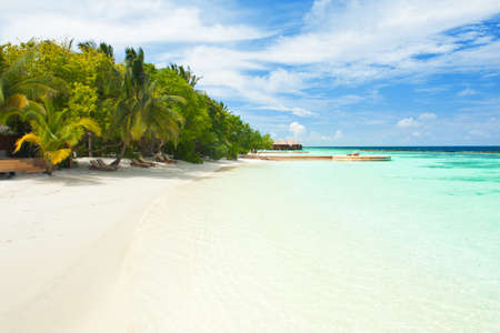 Beautiful tropical paradise in Maldives with coco palms hanging over the white and turquoise sea photo