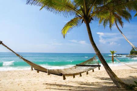 hammock: Hamaca rom�ntica agradable a la sombra de la palmera en la playa tropical por el mar