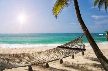 Hamaca romántica agradable a la sombra de la palmera en la playa tropical por el mar