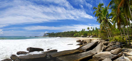 Tropical paradise on Sri Lanka with palms hanging over the mighty stones and a beach which is washed by a sea surf Stock Photo