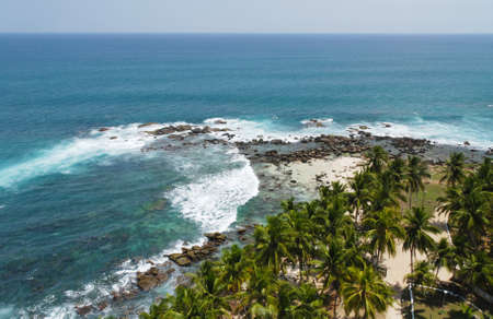 Tropical paradise on Sri Lanka with palms hanging over the white beach and turquoise sea from above