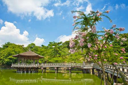 nara park: Beautiful wooden gazebo over the lake in Nara city, Japan.