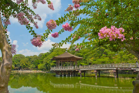 Beautiful wooden gazebo over the lake in Nara city, Japan. photo