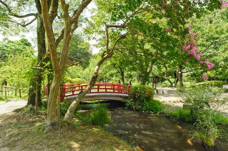 ponte giapponese: Bellissimo giardino giapponese con un lago e un ponte rosso nella parte anteriore