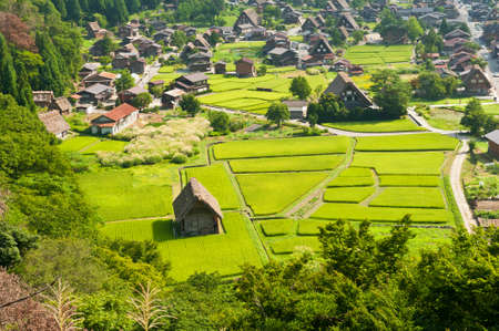 gokayama: Famous traditional Japanese village Ogimachi - Shirakawa-go from above