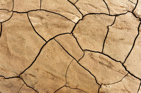 Dry ground with a net of cracks photo