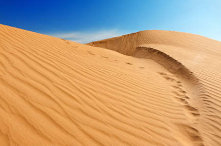Beautiful sand dunes in the Sahara desert, Tunisia photo