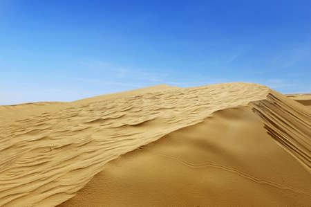 Beautiful sand dunes in the Sahara desert, Tunisia Stock Photo - 13180914